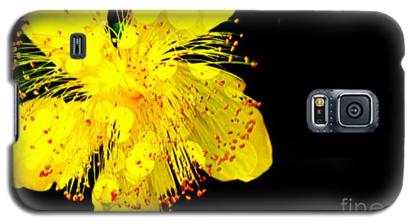 Yellow Galaxy S5 Case by Carlee Ojeda