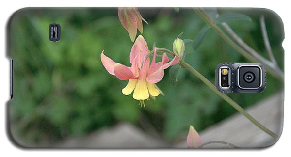 Yellow Columbine 2 Galaxy S5 Case
