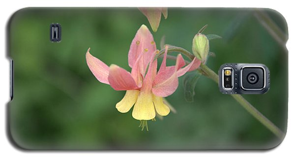 Yellow Columbine Galaxy S5 Case