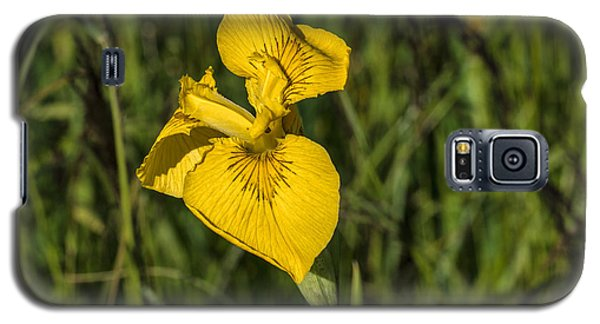 Galaxy S5 Case featuring the photograph Yellow Crown by Leif Sohlman
