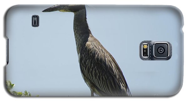 Yellow-crowned Night-heron Galaxy S5 Case