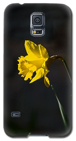 Yellow Daffodil Galaxy S5 Case