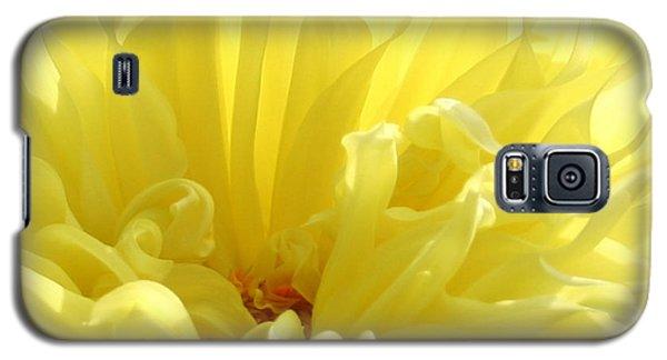 Yellow Dahlia Burst Galaxy S5 Case