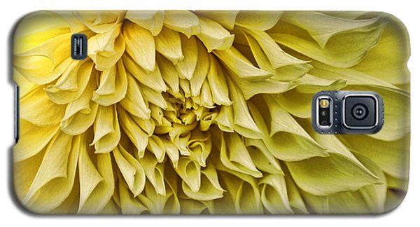 Yellow Dahlia Galaxy S5 Case by Laurinda Bowling