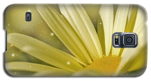 Galaxy S5 Case featuring the photograph Yellow Daisy by Ann Lauwers