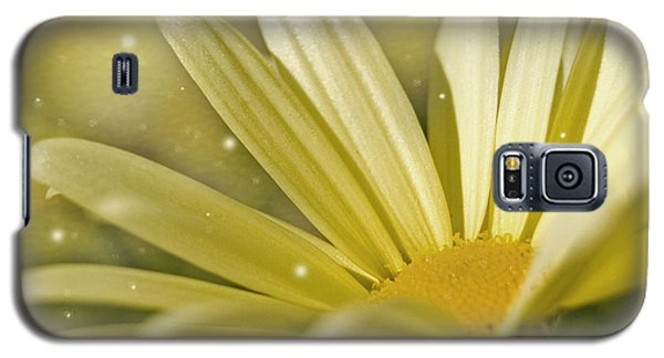 Yellow Daisy Galaxy S5 Case by Ann Lauwers