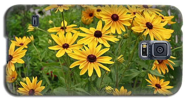 Yellow Daisy Flowers #2 Galaxy S5 Case