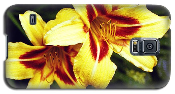 Galaxy S5 Case featuring the photograph Yellow Daylilies  by Tom Brickhouse