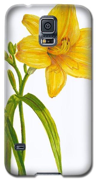 Yellow Daylily - Hemerocallis Galaxy S5 Case