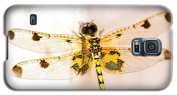 Dragon Galaxy S5 Case - Yellow Dragonfly Pantala Flavescens by Iris Richardson