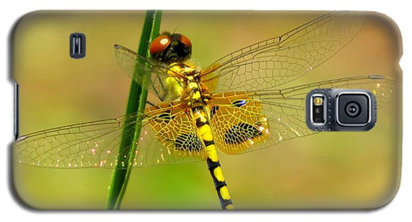 Yellow Dragonfly Galaxy S5 Case
