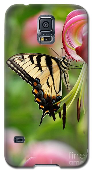 Yellow Eastern Swallowtail Butterfly Galaxy S5 Case