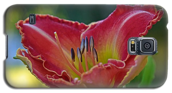 Yellow Edge Daylilly  Galaxy S5 Case