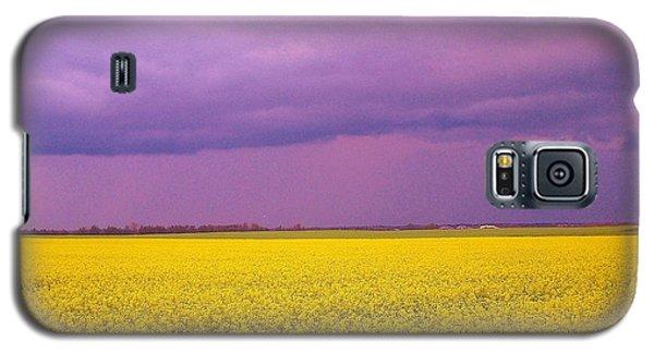 Yellow Field Purple Sky Galaxy S5 Case