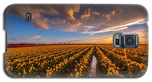 Yellow Fields And Sunset Skies Galaxy S5 Case by Mike Reid