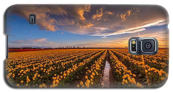 Yellow Fields And Sunset Skies Galaxy S5 Case