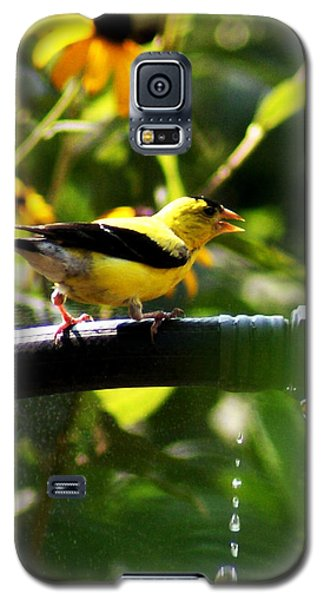 Galaxy S5 Case featuring the photograph Yellow Finch With A Water Leak by B Wayne Mullins