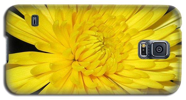 Yellow Flower Closeup Galaxy S5 Case