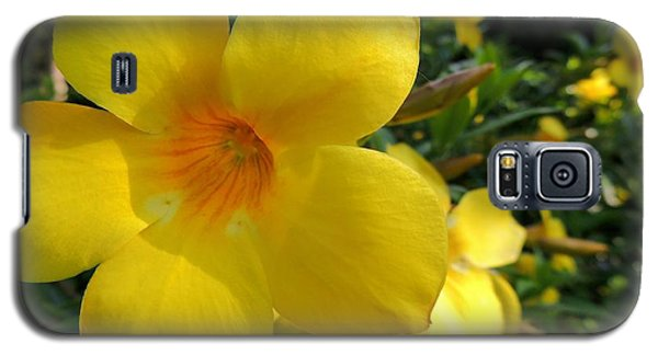 Galaxy S5 Case featuring the photograph Yellow Flower by Kristine Merc