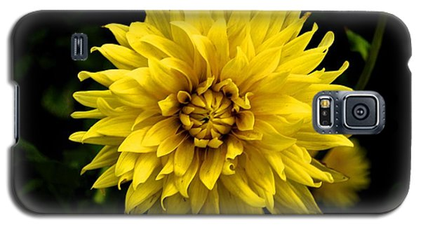 Yellow Flower Galaxy S5 Case