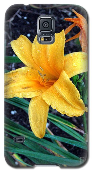 Galaxy S5 Case featuring the photograph Yellow Flower by Sergey Lukashin