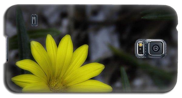 Yellow Flower Soft Focus Galaxy S5 Case