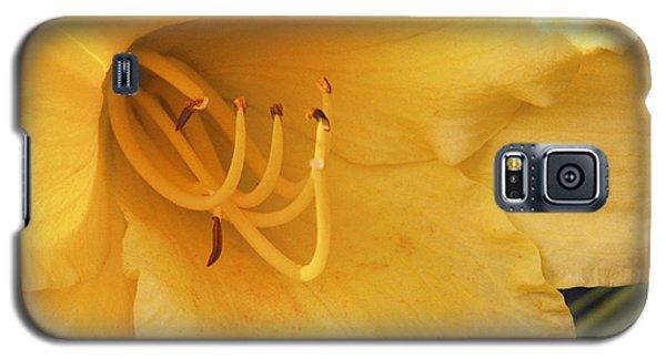 Yellow Flower Galaxy S5 Case