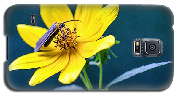 Galaxy S5 Case featuring the photograph Yellow Flower With Company by Susi Stroud