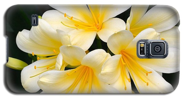Galaxy S5 Case featuring the photograph Clivia Yellow Flowers by Jeannie Rhode
