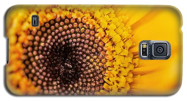 Galaxy S5 Case featuring the photograph Yellow Gerbera Squared by TK Goforth