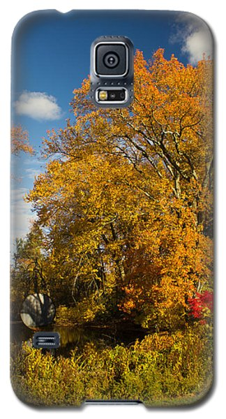 Galaxy S5 Case featuring the photograph Yellow Giant by Jose Oquendo