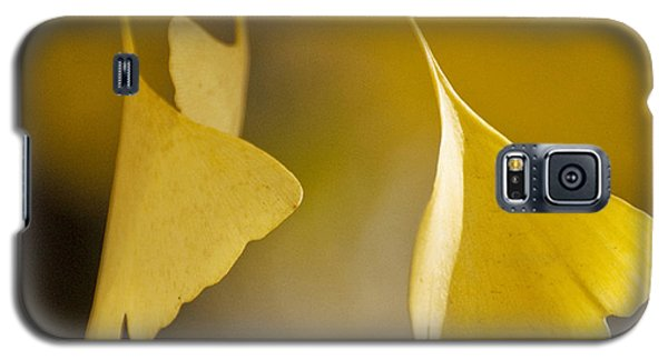 Yellow Ginkgo Galaxy S5 Case