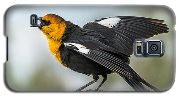 Galaxy S5 Case featuring the photograph Yellow-headed Blackbird by Yeates Photography