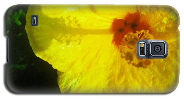 Galaxy S5 Case featuring the photograph Yellow Hibiscus by Alohi Fujimoto