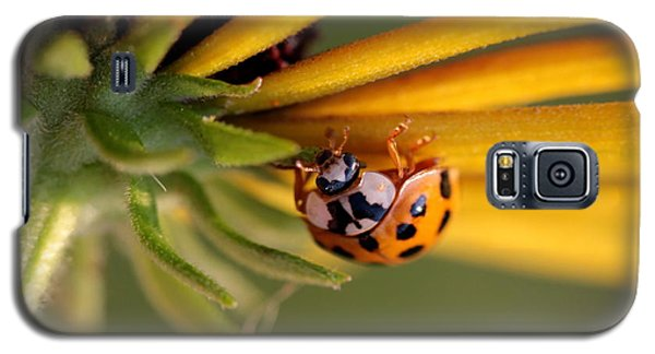 Galaxy S5 Case featuring the photograph Yellow Lady - 3 by Kenny Glotfelty