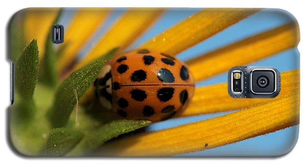 Galaxy S5 Case featuring the photograph Yellow Lady Bug - 5 by Kenny Glotfelty