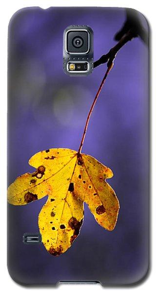Yellow Leaf Galaxy S5 Case