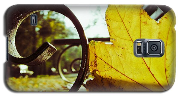 Yellow Leaf On A Bench In A Park Galaxy S5 Case