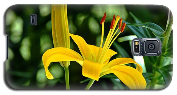Yellow Lilies Galaxy S5 Case
