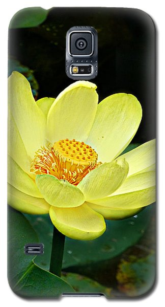 Galaxy S5 Case featuring the photograph Yellow Lotus by William Tanneberger