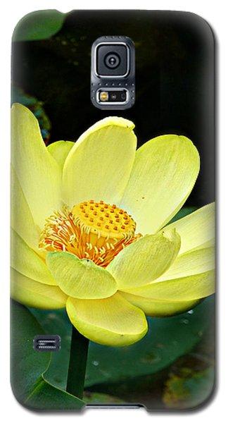 Yellow Lotus Galaxy S5 Case