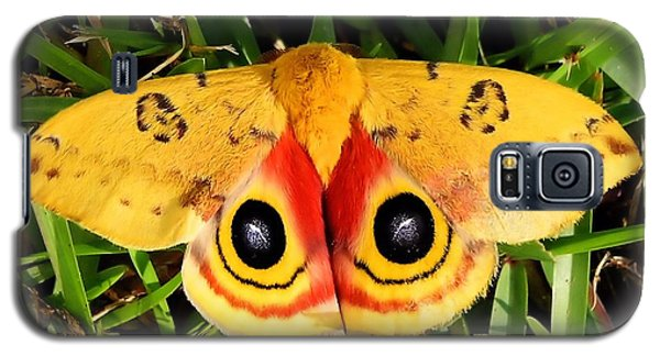 Yellow Moth Galaxy S5 Case by Ed Roberts