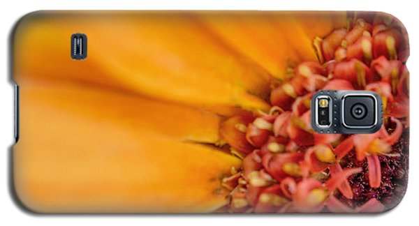Galaxy S5 Case featuring the photograph Yellow Orange Gerbera Squared by TK Goforth