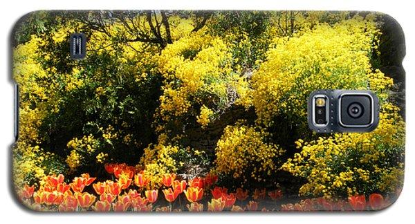 Yellow Orange - Springtime Galaxy S5 Case by Phil Banks