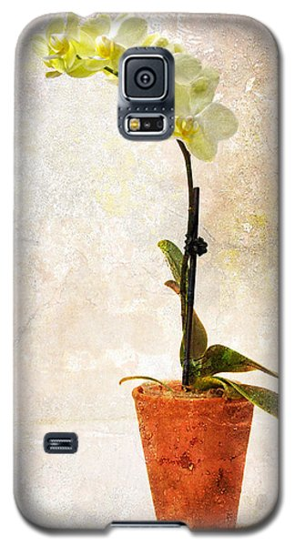 Yellow Orchid Galaxy S5 Case by Patti Deters