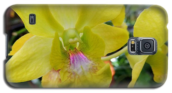 Galaxy S5 Case featuring the photograph Yellow Orchid by Kristine Merc