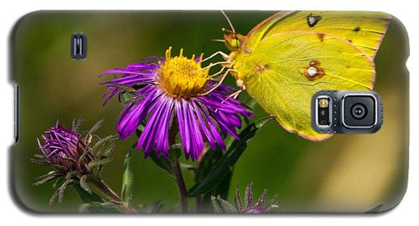 Yellow Over Purple Galaxy S5 Case
