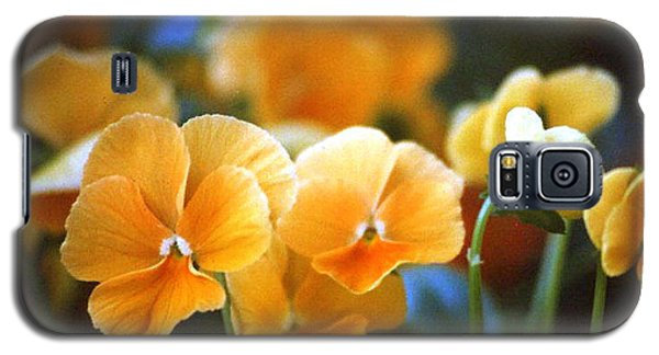 Yellow Pansy Galaxy S5 Case