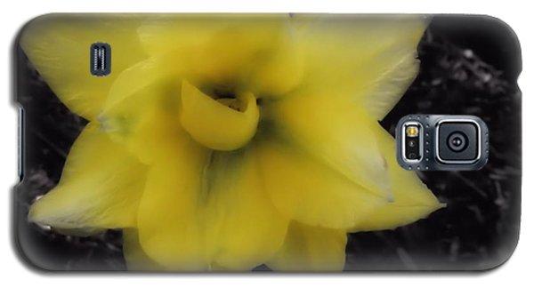Yellow Parrot Tulip Galaxy S5 Case
