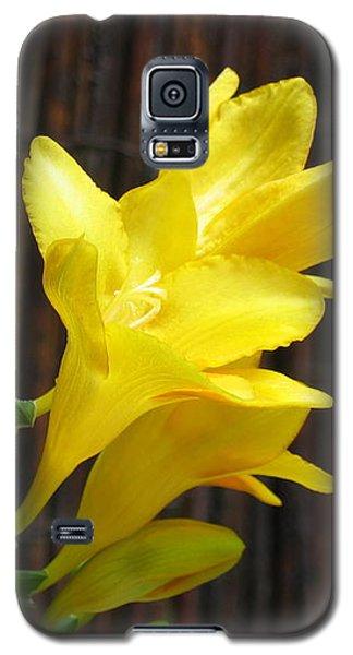Yellow Petals Galaxy S5 Case